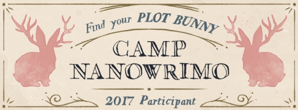 Camp-2017-Participant-Facebook-Cover